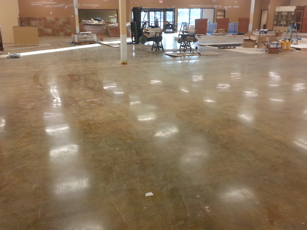 Polished and stained concrete floors petsmart california for Stained polished concrete floor