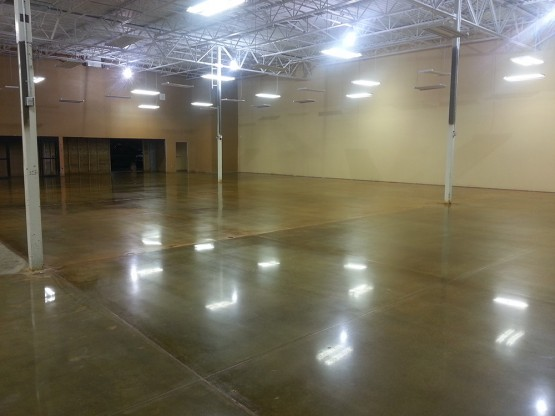Stained And Polished Concrete floors petsmart